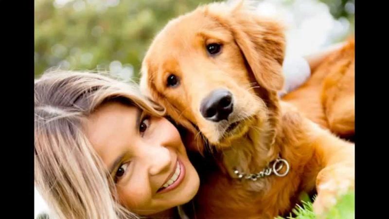 Dos especies, una amistad sin limite (amistad entre perros y humanos)
