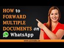 How to Forward Multiple Documents on WhatsApp on an Android Device