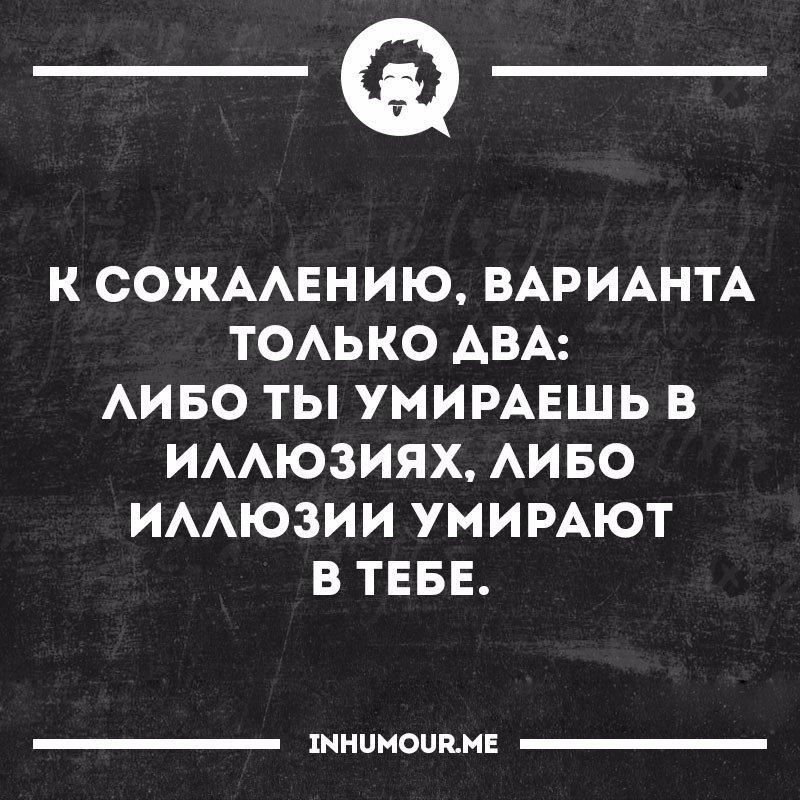 https://pp.vk.me/c543108/v543108554/49cef/iM8QZkvT_W0.jpg