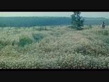 «Иван да Марья» (1974) - музыкальный, сказка, реж. Борис Рыцарев