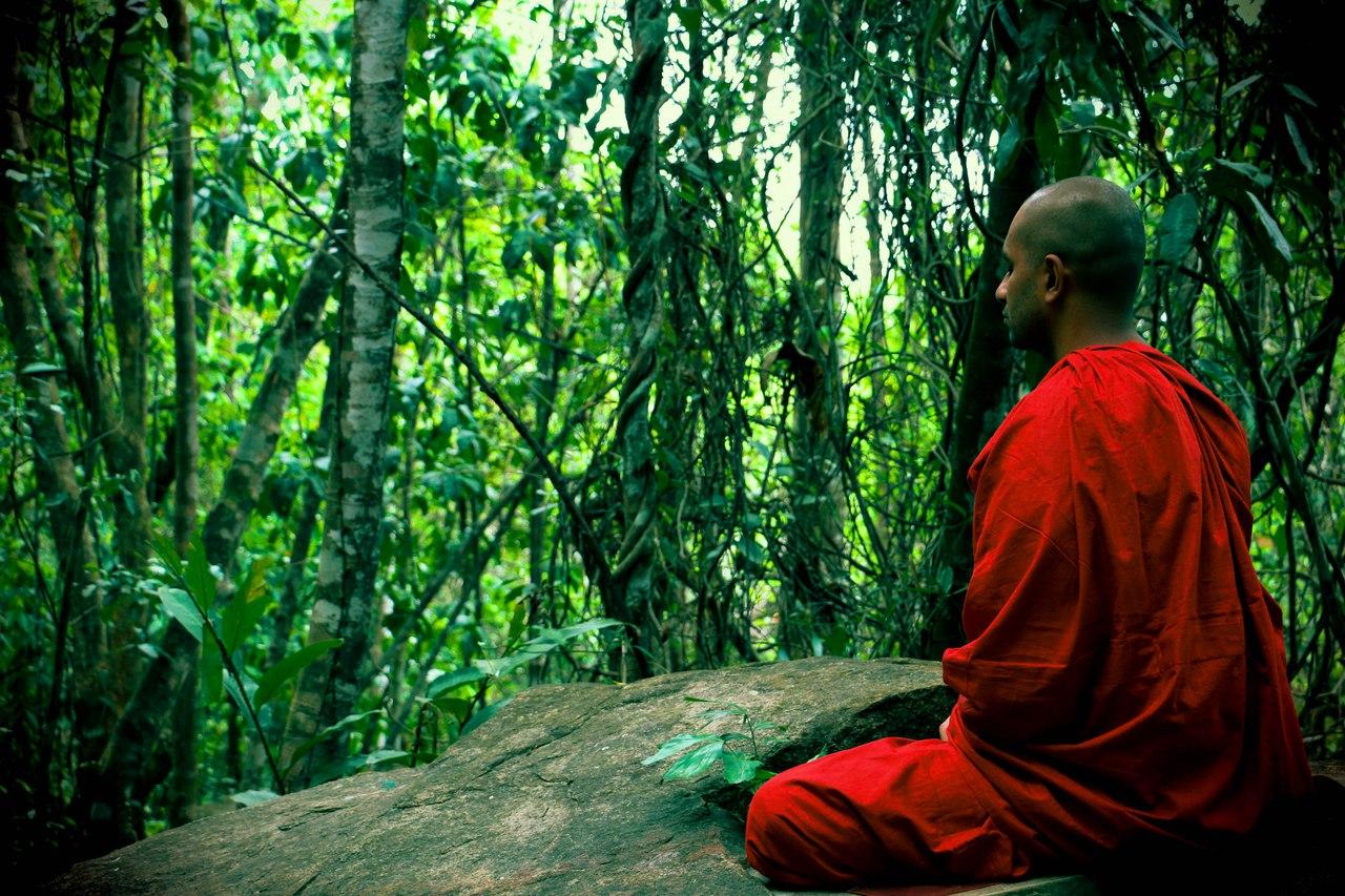 медитация, дхьяна, дзен, йога, раджа-йога, просветление, пробуждение, аштанга-йога, патанджали