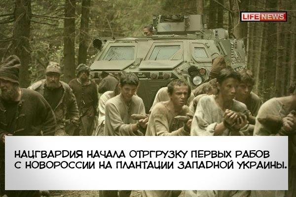 Полигон для подготовки боевиков организован в районе Саханки-Коминтерново, - Штаб обороны Мариуполя - Цензор.НЕТ 4421