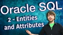 Oracle SQL Tutorial 2 Entities and Attributes