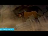 DanielChoi (Scar) mata Andy (Mufasa) a sangue frio.