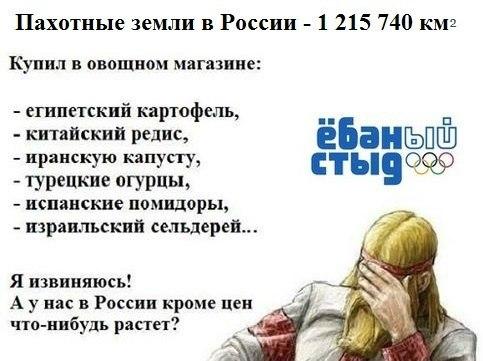 Россия россия - Путин, не стыдно за страну?