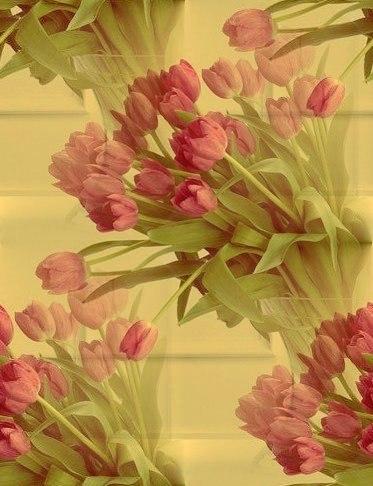 Цветочные и растительные фоны - Страница 3 RdrUNj5NIcI