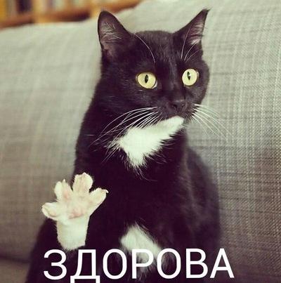 Евгений Фалькин, 16 февраля , Волгоград, id42153630