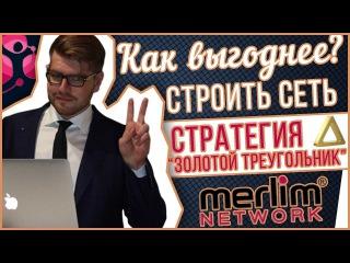 📐 Merlim Network - как выгодно строить сеть? Стратегия золотой треугольник в merlim network