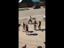 IKRA video/933