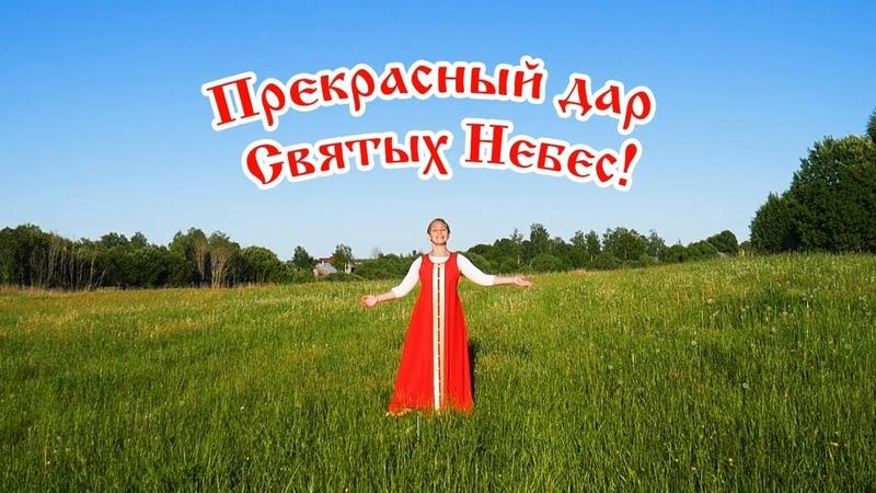 Прекрасный дар Святых Небес Стихи Ольга Добровольская