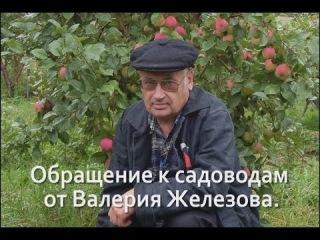 Обращение к садоводам от Валерия Железова. Видео.