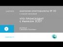 040 | Анатомия криптовалюты. Интервью с Давидом Лолаевым
