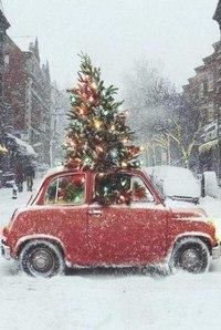 Зима... Морозная и снежная, для кого-то долгожданная, а кем-то не очень любимая, но бесспорно – прекрасная.  - Страница 2 8-kglu0hGSQ