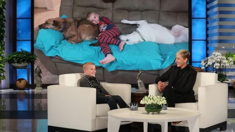 Эллен приветствует Романа МакКона, малыша, спасающего собак