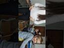 Детский центр робототехники Умник - Майло робот-искатель