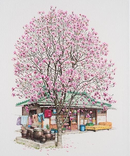 Художница 20 лет рисует магазинчики Южной Кореи