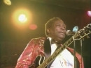 B.B. King - The Thrill Is Gone (Live at Blues Summit)