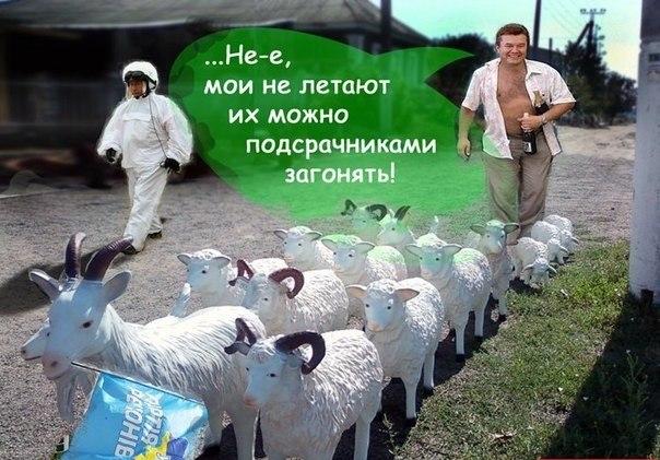Начался допрос Власенко в присутствии понятых - Цензор.НЕТ 29