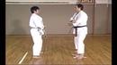 Karate Kihon Ippon Kumite 5 16
