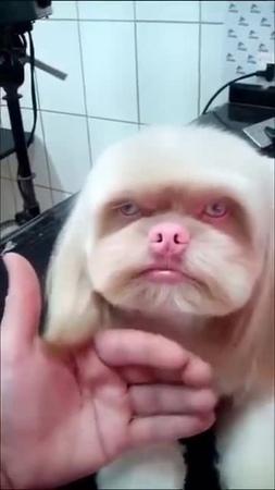 He's not happy