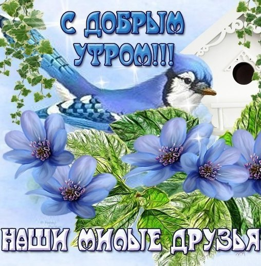 https://pp.userapi.com/c7003/v7003301/33925/i4cxi0yrxWk.jpg