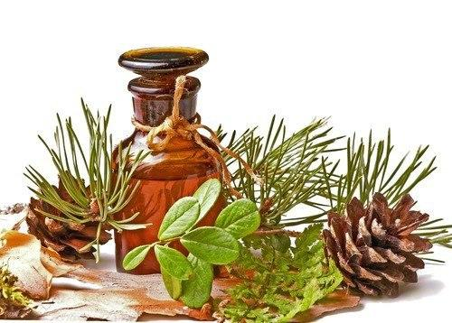 Пихтовое эфирное масло  средство для борьбы буквально со всеми болезнями