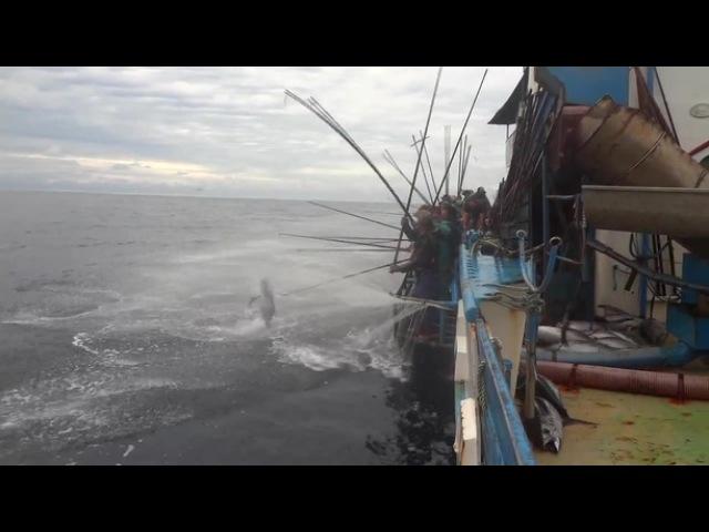 Изи рыбалка(6 sec) bpb hs,fkrf(6 sec)