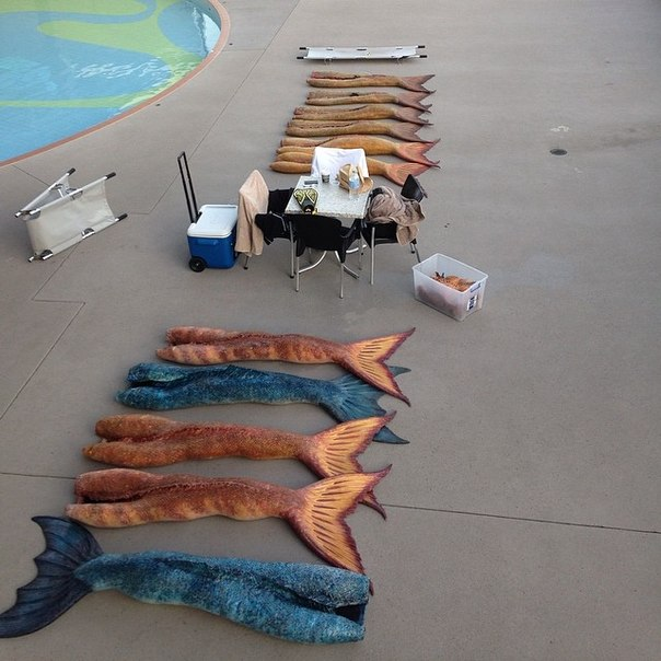 фото русалок тайны острова мако