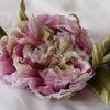 El favorito de la flor (Любимый цветок)