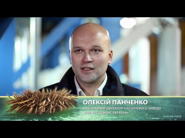 Сучасний аграрій. Компанія Євраліс Семенс Україна