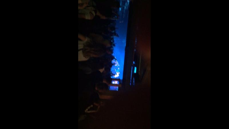 NoizeMc 10 ноября клуб А2