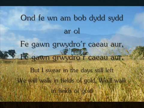 Y Caeau Aur - Gemma Markham (geiriau / lyrics)