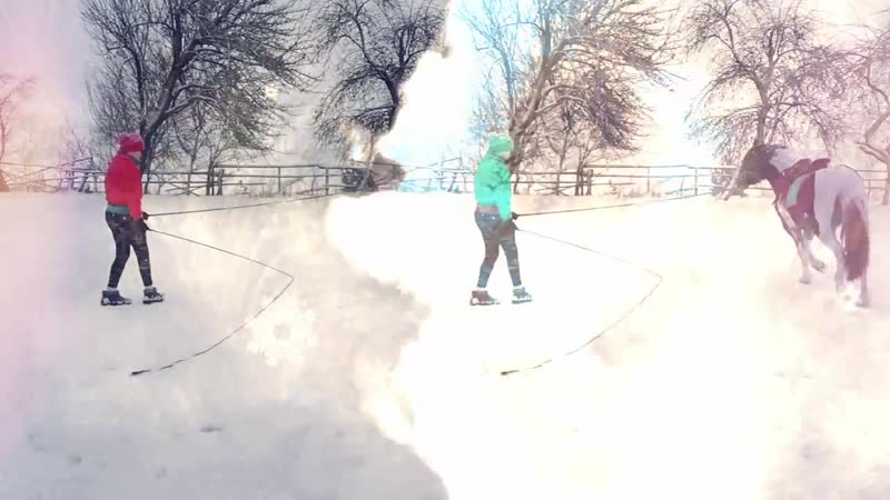 Наш снежный день ❄️🐎❤️