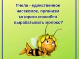Сходство пчелы и человека.