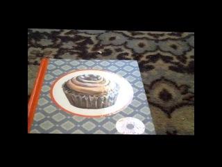 Vi-L-Love видео-обзор на мой следующий личный дневник.