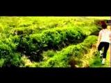 Перед рассветом (2012) Before Dawn. трейлер.