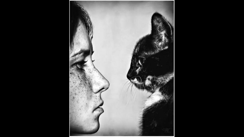 Пойми, друг мой, сердце женщины и кошки – сущая бездна, и ни мужчинам, ни котам не дано измерить ее глубину.