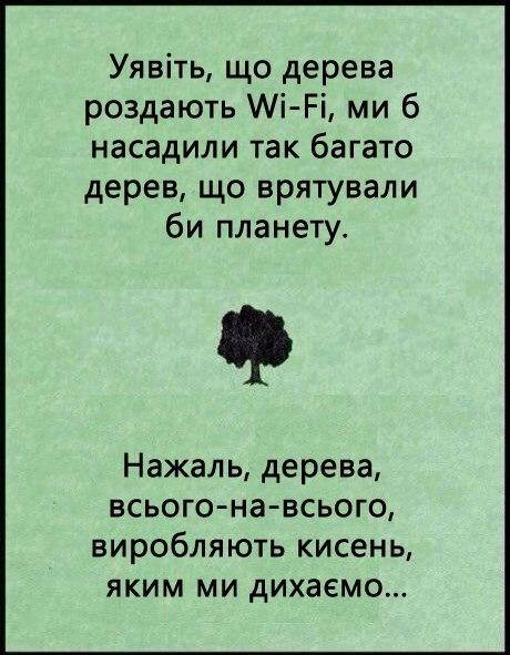 дерева роздаються wi-fi