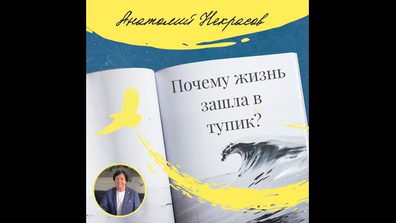 Анатолий Некрасов о зрелости