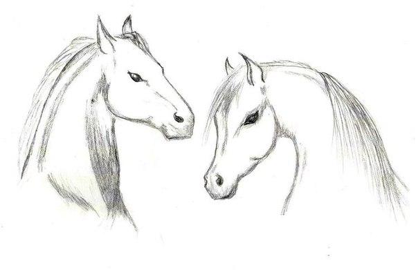 простые рисунки карандашом: