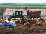 мир белогорья новости 27 05 11 14 30 красногвардейский район