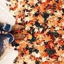 У осени красивые краски и ностальгические нотки…