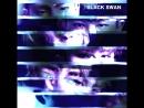 VK22.08.2018 MONSTA X 「BLACK SWAN」Teaser