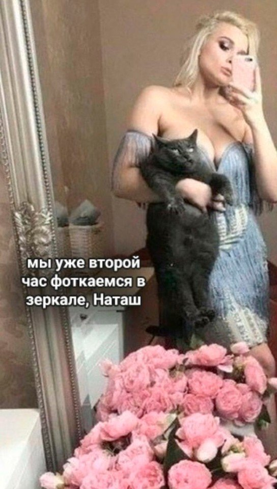 Когда у твоей хозяйки очередной бзик))