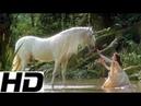 Legend • The Mummers' Dance • Loreena McKennitt