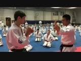 Варианты Защиты и Контратаки в Кёкусинкай карате. Подготовка бойца от Японских мастеров https://vk.com/oyama_mas