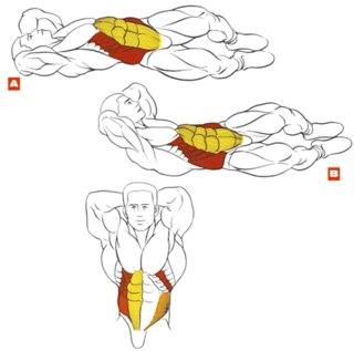 Прокачка косых мышц живота.  Выделяет талию и укрепляет пресс.  Базовое упражнение.  Наверх.