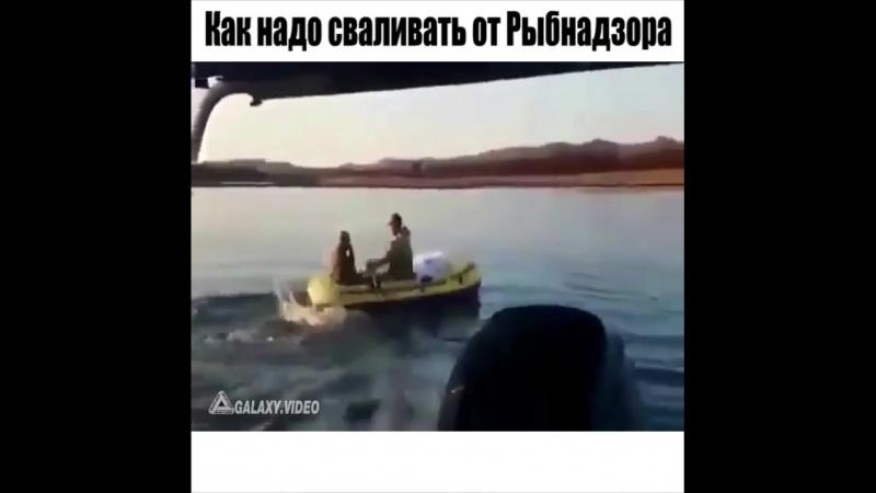 как надо сваливать от Рыбнадзора