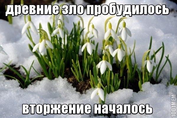 http://cs320116.vk.me/v320116907/905c/epzuYmkBUVk.jpg