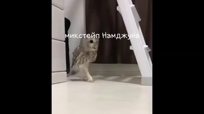 Микстейп Намджуна mp4